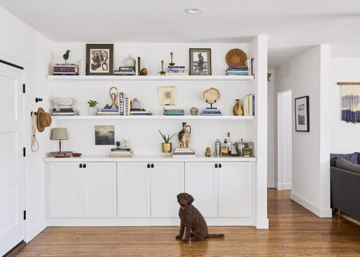 built in bookcases with lower cabinets and styled shelves, dog sitting in front