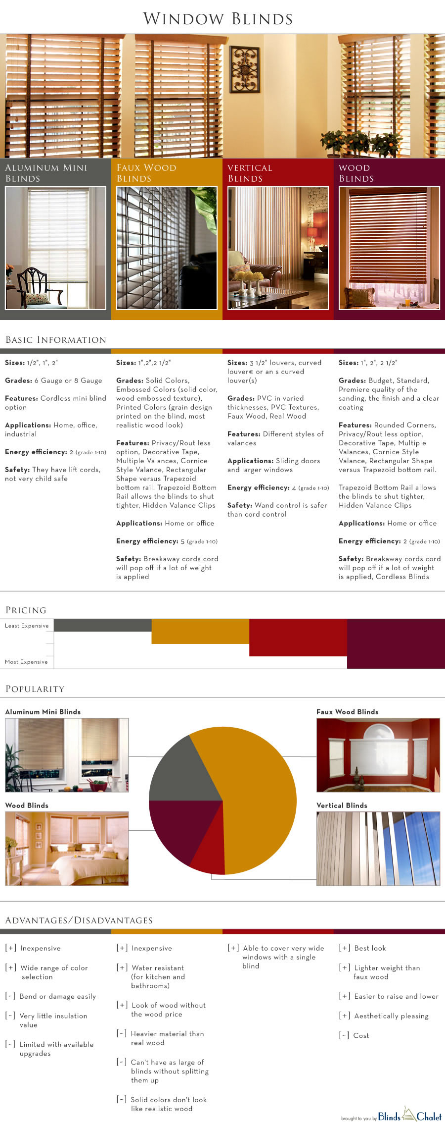 Window Blinds Infographic by Blinds Chalet