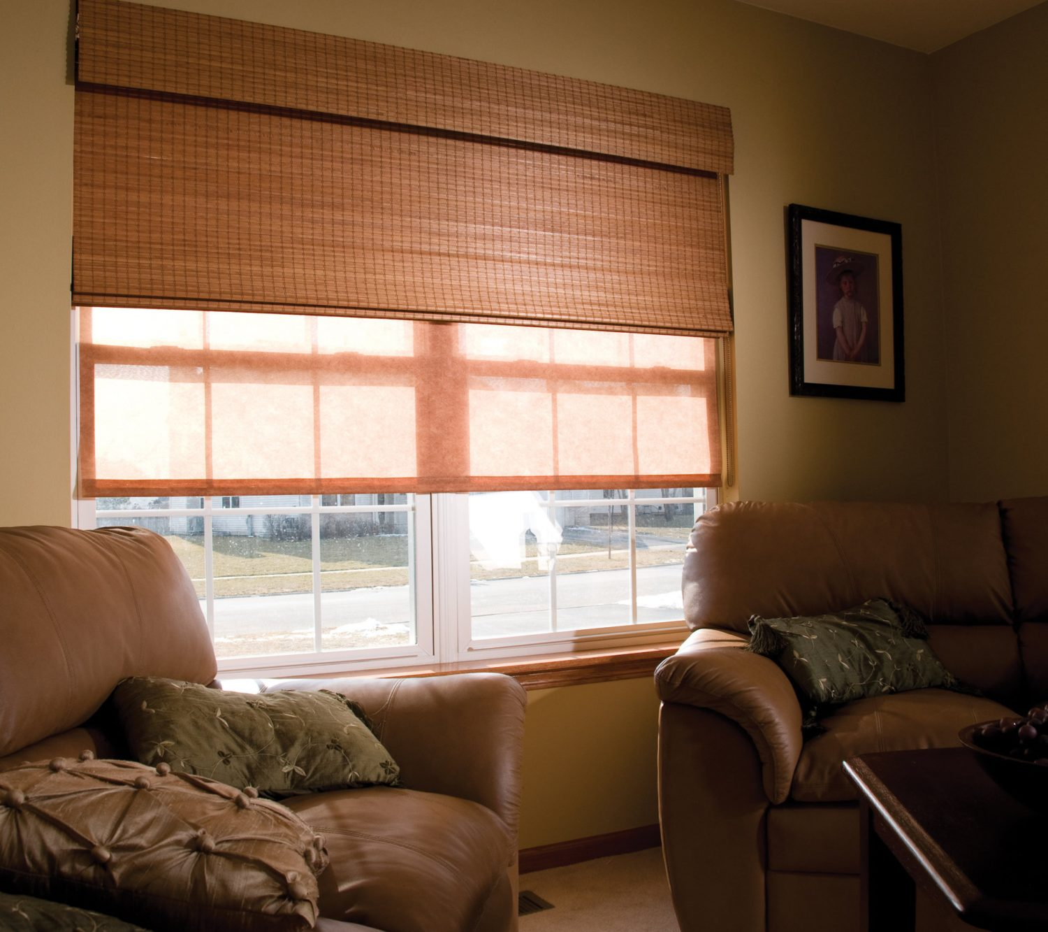 Fabric and Bamboo Roman Shades - BlindsNMore