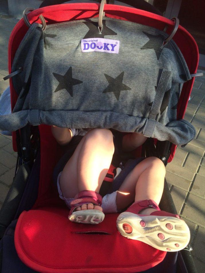Dooky-5