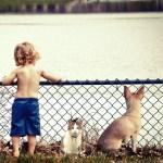 Zwierzak w domu – o wspierającym wpływie zwierząt na rozwój dziecka.