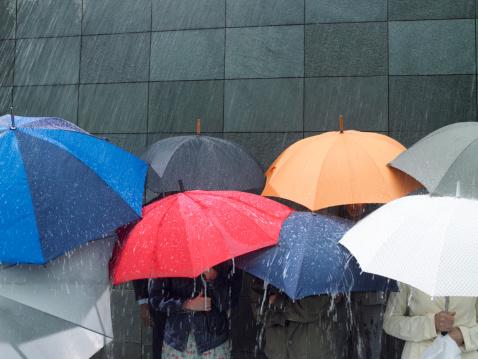 強風中也不會反! 日本特製雨傘