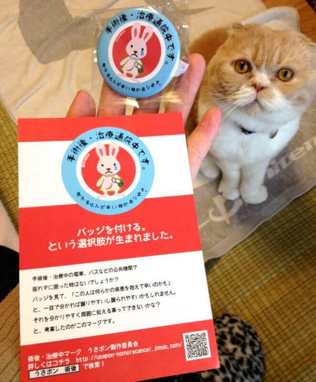 日本「USAPON」兔子襟章 極具意義的小設計!