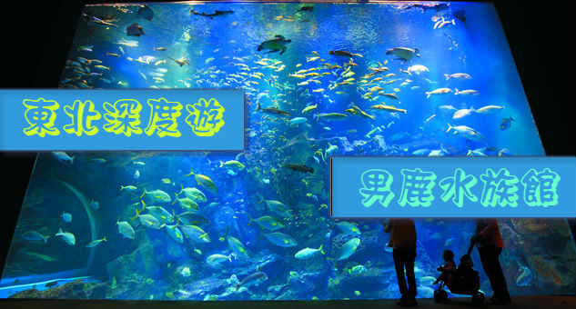 【東北旅遊】欣賞日本海的自然美吧!秋田男鹿水族館