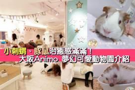 小刺蝟、豚鼠治癒感滿滿!大阪Animo 夢幻可愛動物園介紹