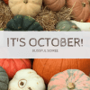 Catching Up In October