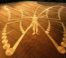Crop Circles are made by our Galactic Friends