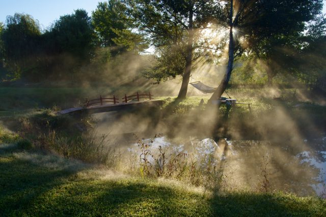 Morning Light on Iowa Pond