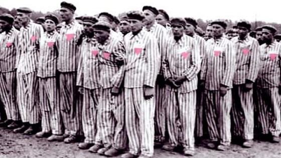 olocausto omosessuale