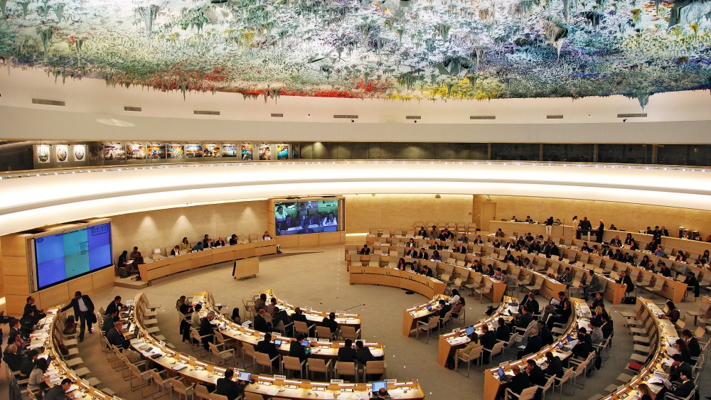 commissione diritti umani