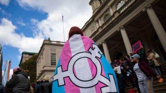 bandiera transessuale