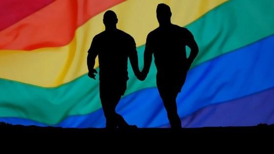 coppie omosessuali reversibilità