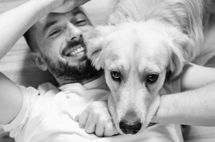 pet therapy coronavirus