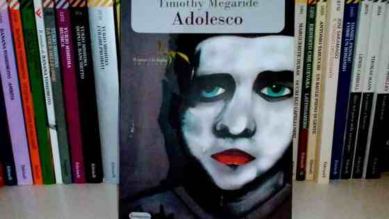 adolesco il ramo e la foglia recensione