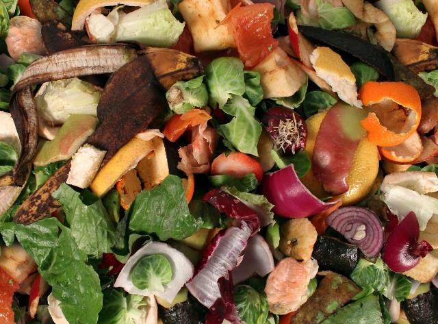 Food waste recycling up amongst North East businesses