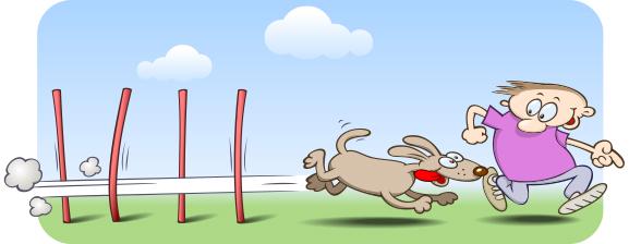 agility-dog 01