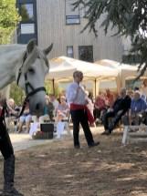 spectacle-equestre-abbatiale-22