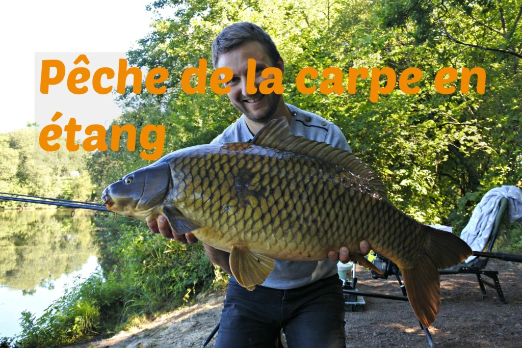 pêche de la carpe en étang