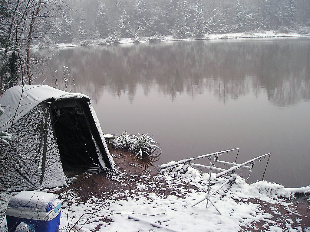 8 astuces pour pêcher la carpe en hiver