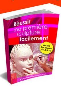 Le livre réussir votre première sculpture