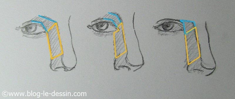 comment dessiner les yeux distance nez