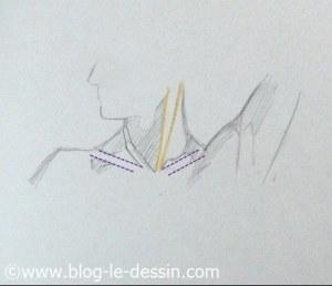 dessiner cou épaules tete tournee surbrillance