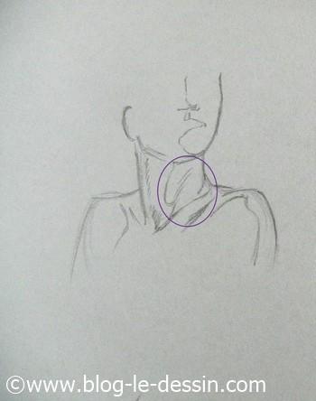 dessiner cou epaules pli nuque