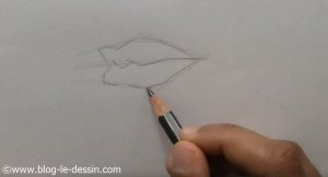 exemple dessin bouche perspective