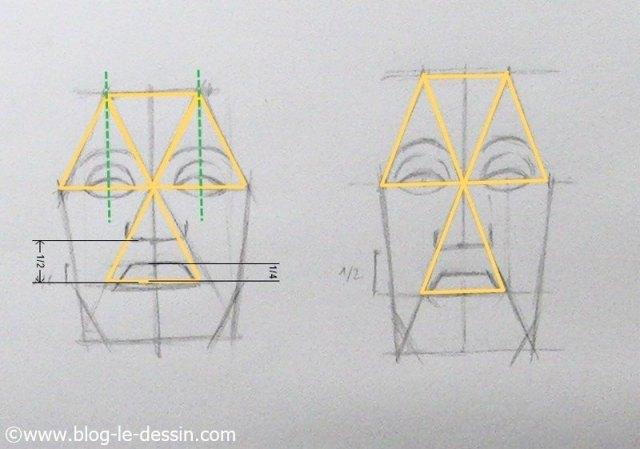 dessiner visage face mesures essentielles