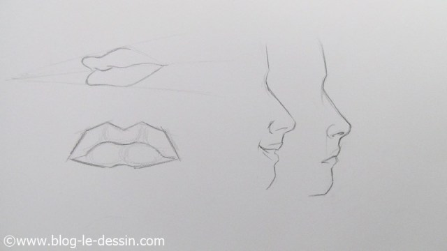 Reperez les petites boules dans les levres pour dessiner les bouches plus facilement.