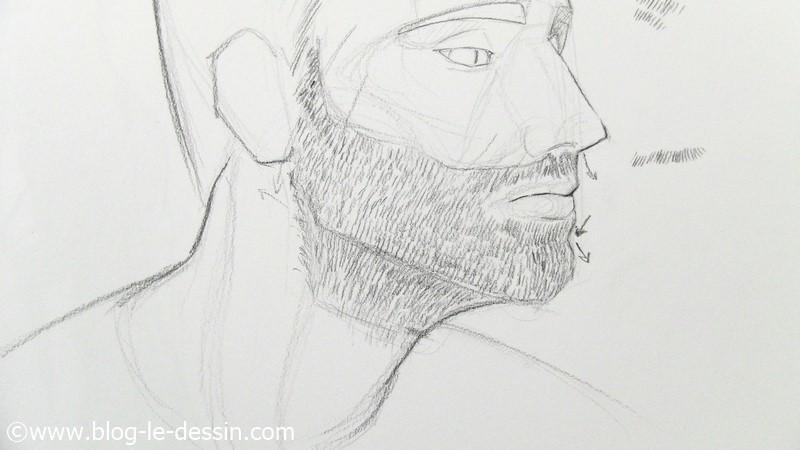 dessiner les barbes au crayon