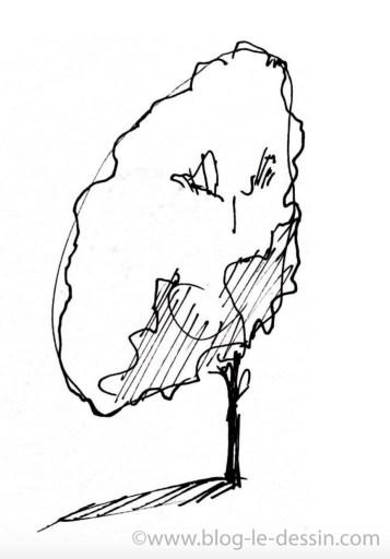 arbre dessin