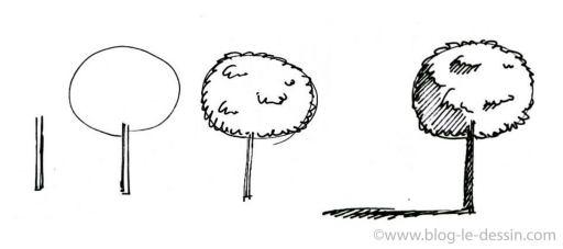 dessiner un arbre feuillu