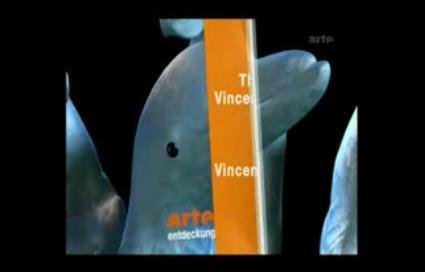 Documentaire Arte - L'Homo Delphinus