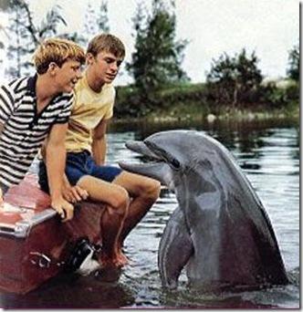 Flipper le dauphin a créé l'image d'un dauphin toute douceur et gaieté
