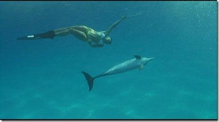 Mandy nageant avec un dauphin - Bonus du DVD de The Cove (la baie de la honte)