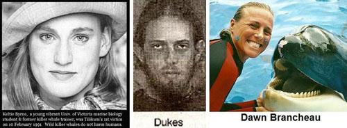 Les victimes de Tilikum