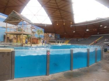 Belgique-bruges-bassin