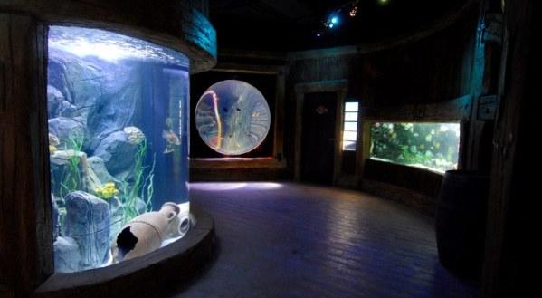 italie-gardaland-sealife