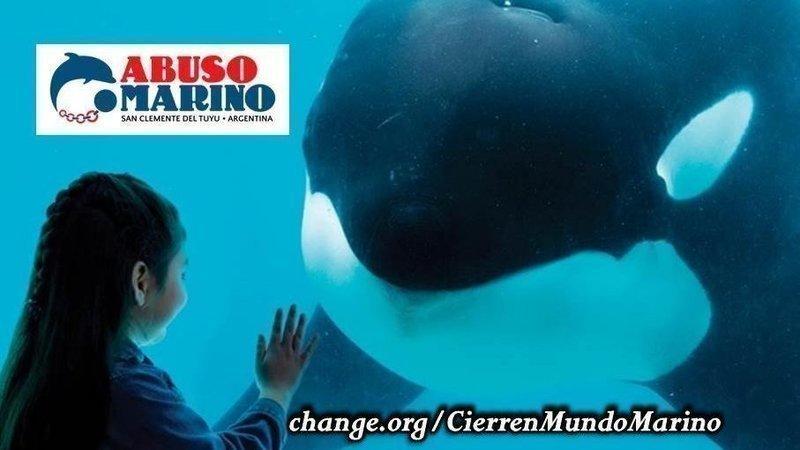 Visuel de la pétition de Cierren Mundo Marino