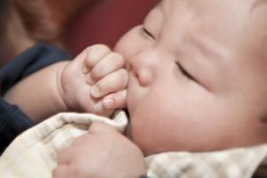福岡 赤ちゃんの写真 家族写真 マタニティ花嫁 0358 前撮り