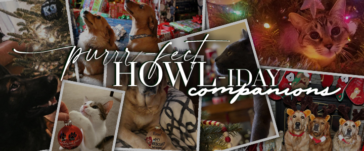 Pets – The PURRRfect HOWLiday Companions! + GIVEAWAY!