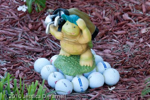 Golfer Turtle