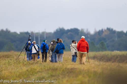 Birders at Lake Hancock Outfall Wetlands