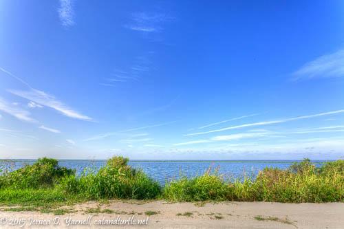 Lake Apopka North Shore