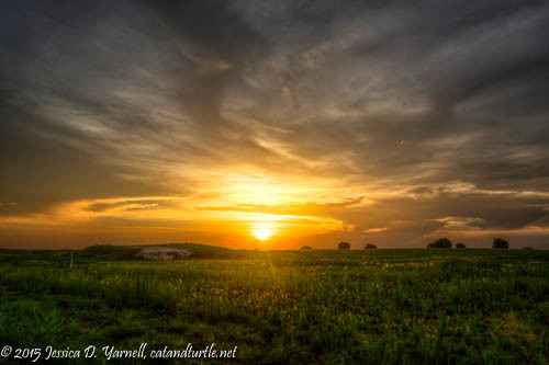 Sunset Project (June)