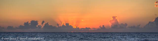 Sunrise over the Ocean at Archie Carr National Wildlife Refuge