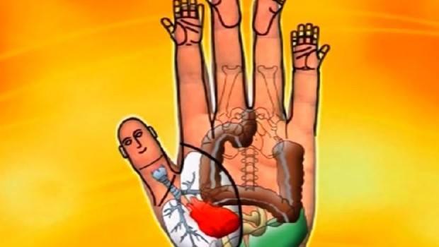 Svaki prst označava jedan organ