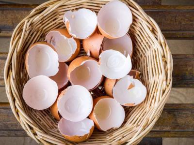 Kako možete iskoristiti ljusku od jajeta?