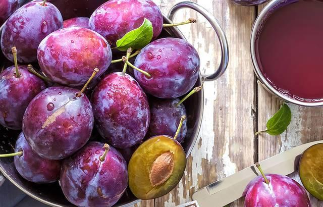 Negativan utjecaj visokih temperatura na voćke i kako im pomoći